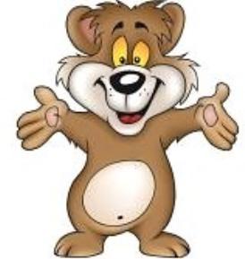 Medve kép